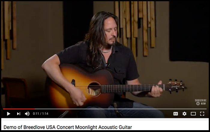breedlove-usa-concert-moonlight-usa-youtube.png